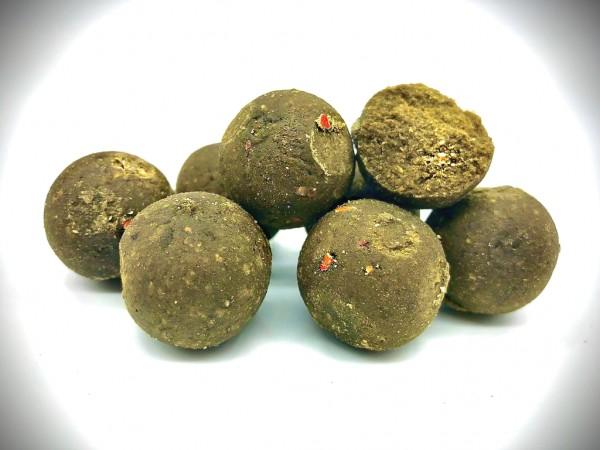 Green Muschel Boilie (GLM)