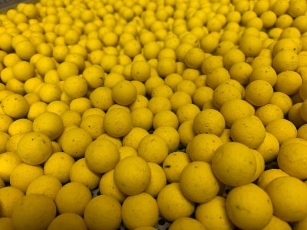 N2 Zitrone Bulk 20kg