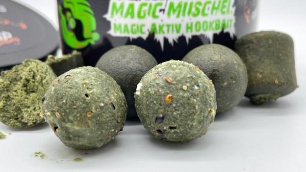 Magic Muschel (GLM)24mm